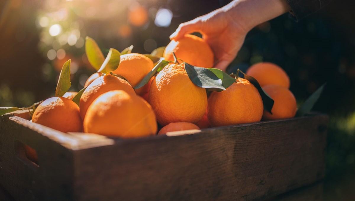 Fiyatı en fazla artan ürün portakal, en fazla düşen soğan oldu