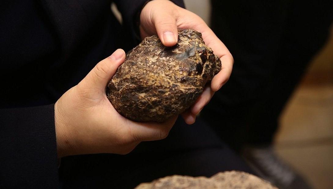 <div><span>Bayburt'ta bulundu, Çin'den talip çıktı</span><br></div>